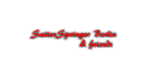 SaitenSpringer Berlin               & friends
